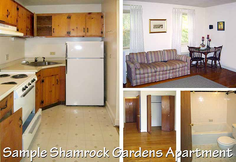 Shamrock corporation apartments in charlottesville va for Shamrock garden apartments charlotte nc